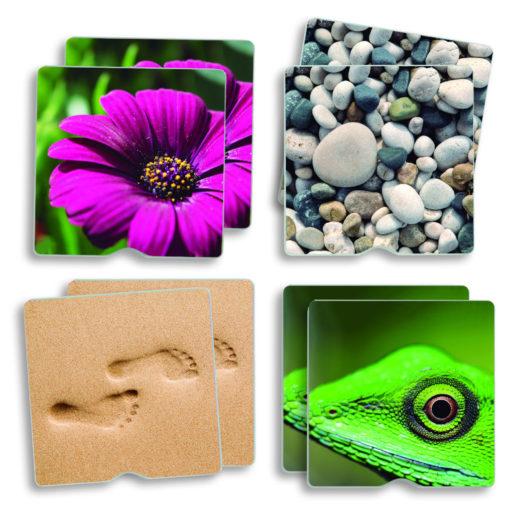 4 Memory Pärchen: Die Kärtchen zeigen: lila Blume, Kieselsteine. Fußspuren im Sand, Gecko